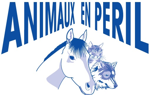 animaux-en-peril
